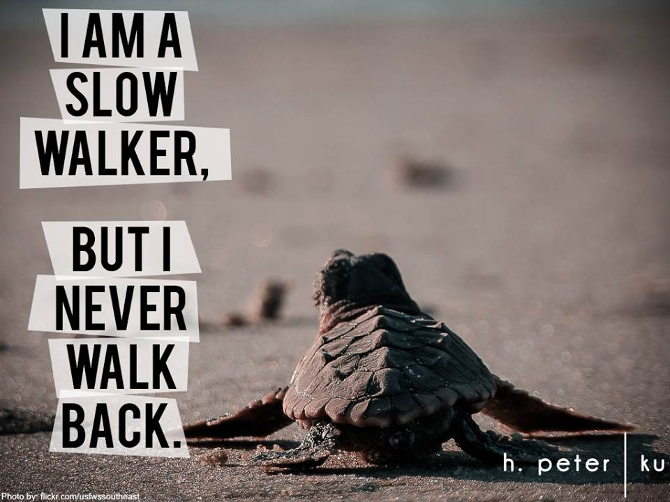 I-am-a-slow-walker-but-I-never-walk-back
