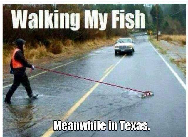 Meanwhile in texas fort worth dentist 7th street for Free fishing day texas