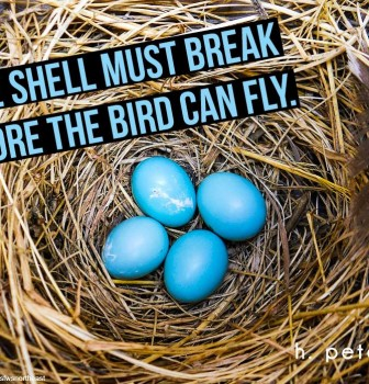 The shell must break before the bird can fly